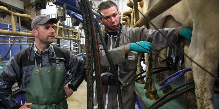 Repère : chiffres clés de la veille sanitaire GDS Bretagne