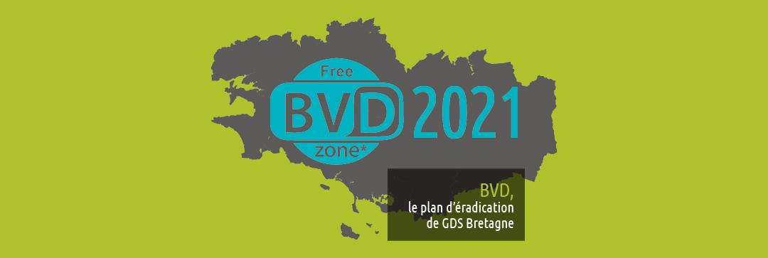 gds-dossier-bvd