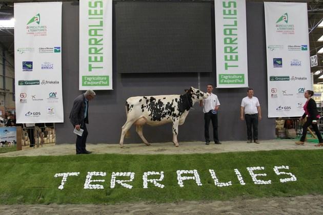 Terralies - GDS Bretagne