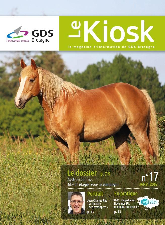 Le Kiosk N°17 | le magazine de l'information de GDS Bretagne