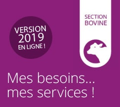 Carte des services | Section Bovine