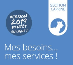 Carte des services | Section Caprine / Ovins lait