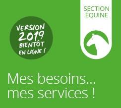 Carte des services | Section Équine