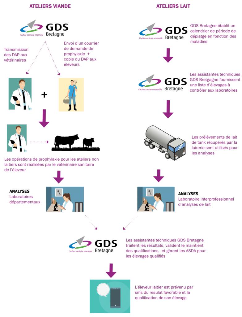 5.Organisation du plan de surveillance et du traitement des résultats