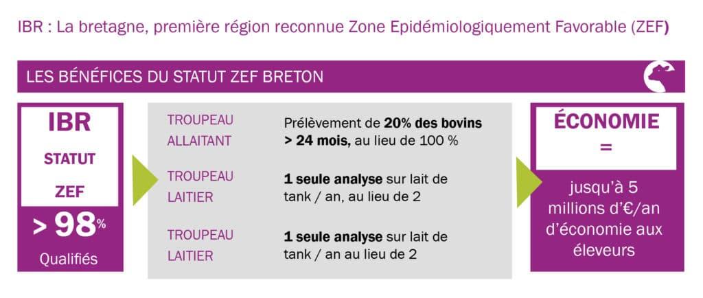 Les bénéfices du statut ZEF Breton
