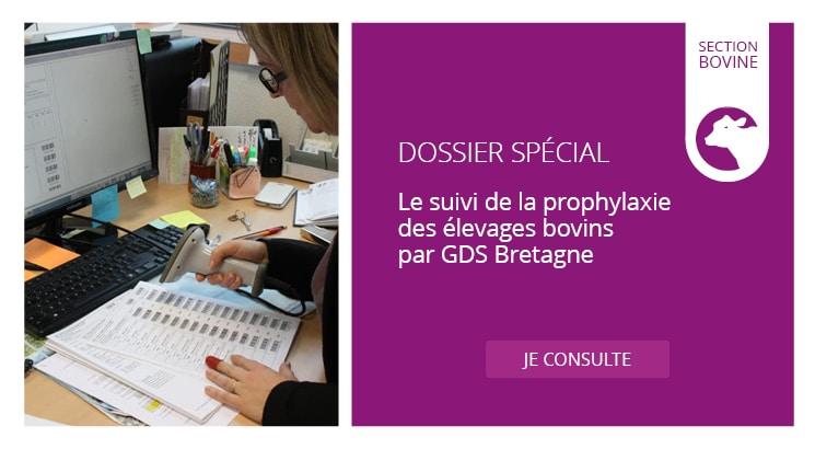 Le suivi de la prophylaxie des élevages bovins par GDS Bretagne