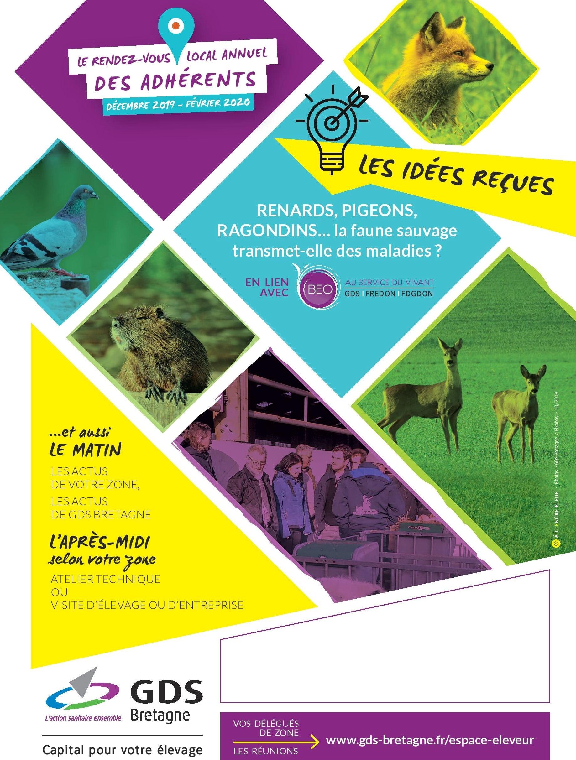 Image flyer pour évènement agenda site internet