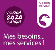 Mes besoins mes services section bovine