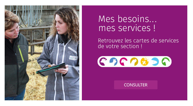 MesMes besoins... mes services !